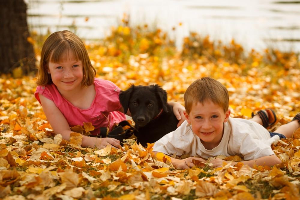 Fall at Carburn Park