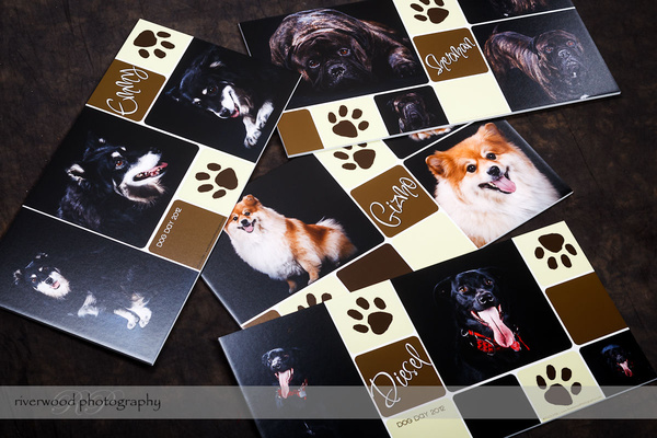 Wall Panels for Clients from Dog Day 2012